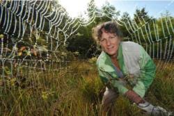 Christine rollard arachnologue au museum national d histoire naturel de pars f g grandin mnhn