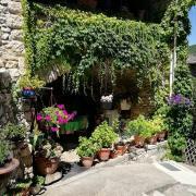 Tharaux maison fleurie