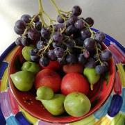 Confiture raisin figues et prunes jaunes