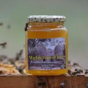 Les reines du bois pot de miel