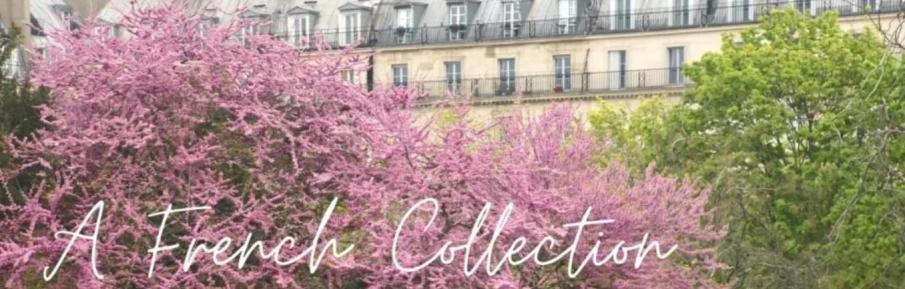 Paris tours©AFrenchCollection